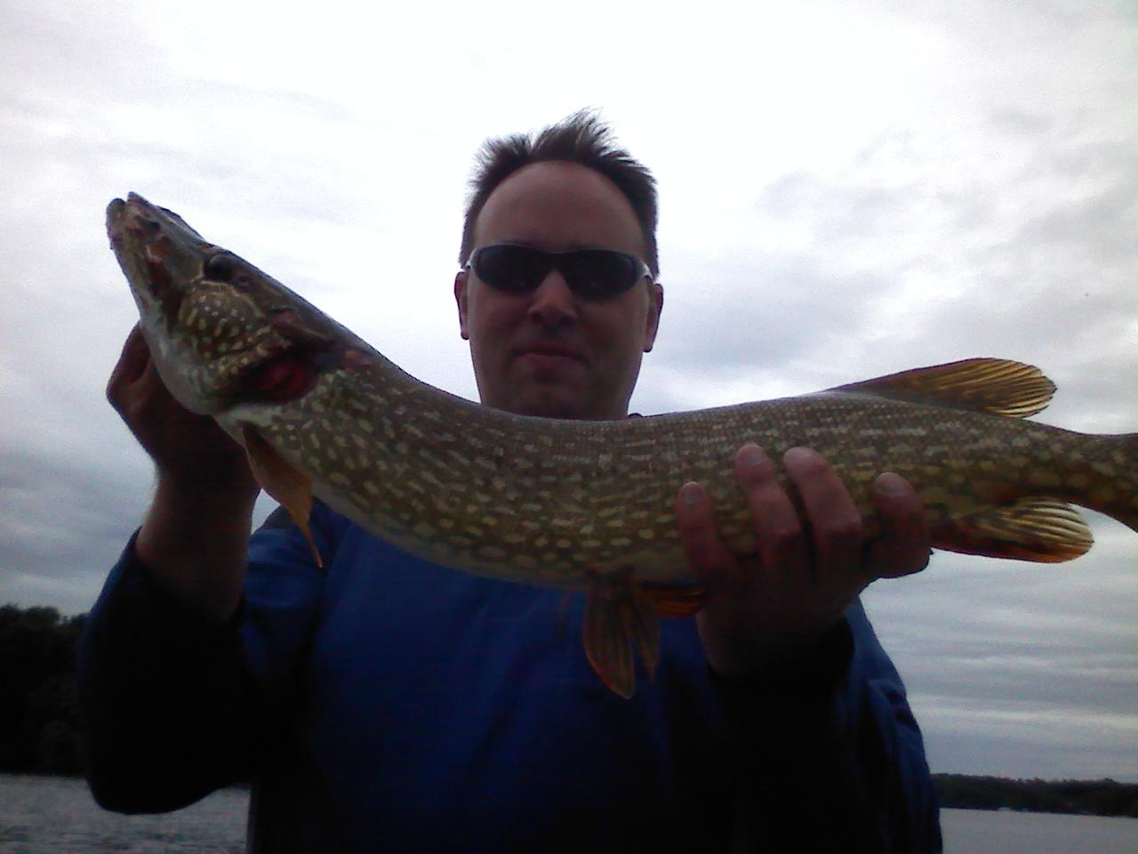 Lake Minnetonka Fishing Northern Pike
